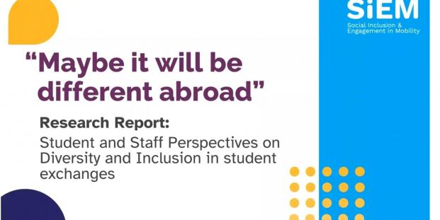 Maybe it will be different abroad: Research report on inclusion in mobility